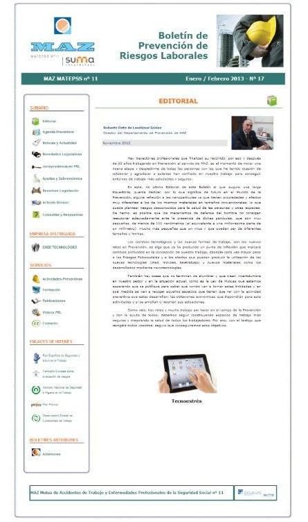 Boletín PRL - Nº 17 - Enero 2013